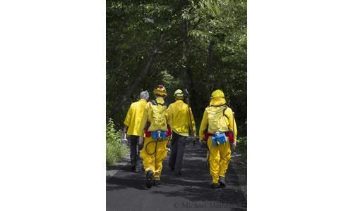 Astoria Firefighters 2013