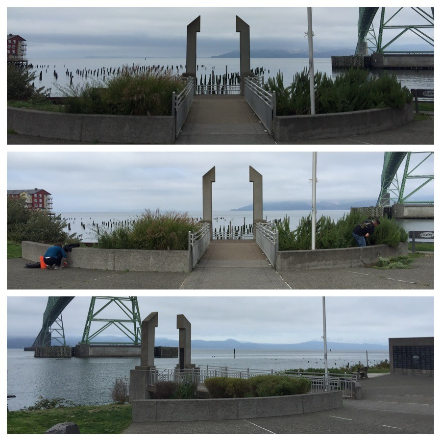 Maritime Memorial Park Clean Up